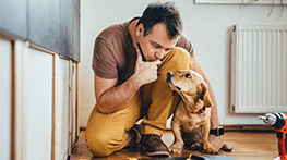Brits twice as likely to insure pets than themselves